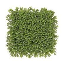 "12""Hx24""W UV-Resistant Outdoor <b>Artificial</b> Boxwood <b>Topiary Hedge</b> ..."