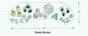 Small Picture Designing a Shade Garden