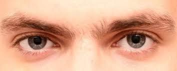 Allergic conjunctivitis (red eye, pink eye) information | myVMC