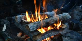 Best Firewood Chart Best Firewood Chart Wood Types For Your Fireplace Or Campfire