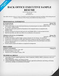 Sample Resume For Back Office Executive Public Services Or