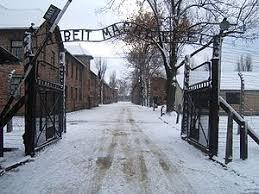「ナチス・ドイツのアウシュビッツ強制収容所」の画像検索結果