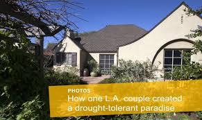 Drought Tolerant Front Yard Landscape Design Drought Tolerant Front Yard Landscaping Ideas How One L A