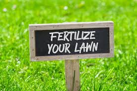Lawn Fertilizer Guide 2019