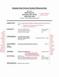 Objective For A Resume Example Lovely Resume Sample For High School