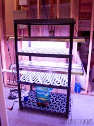 Kitchen Grow Lights Sweet Peas Kitchen A Sweet Peas Side Dish How To Build A Grow