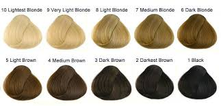 International Colour Charts For Hairdressing Hair And
