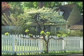 "essay on fences by wilson essay theatrical analysis wilson s ""fences"