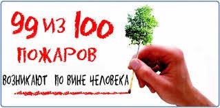 Защита населения от ЧС ЛЕСНЫЕ ПОЖАРЫ Управление лесами  ЛЕСНЫЕ ПОЖАРЫ Управление лесами Тамбовской области