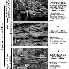 sigmoidal cross stratification