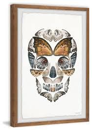 erfly skull framed painting print