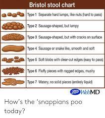 Bristol Stool Chart Type 1 Separate Hard Lumps Like Nuts