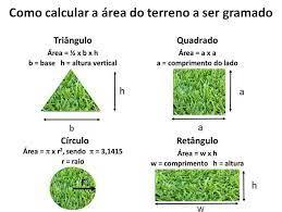A grama esmeralda é indicada para que tipo de jardim? Como Plantar Grama Em 10 Etapas Real Gramas Consulta Preco M2