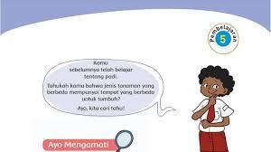 Apa pengaruhnya terhadap kehidupan rakyat indonesia? Kunci Jawaban Tema 3 Kelas 4 Sd Halaman 32 33 34 35 36 37 38 39 Buku Tematik Subtema 1 Tribunnews Com Mobile