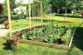 Plan A Garden Online Garden Layout Square Foot Vegetable Garden Plan Garden Layout