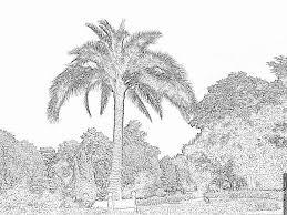 Coloriage Jardin Des Plantes 196 Imprimer Pour Les Enfants