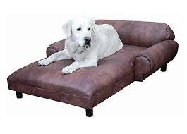 image of cal pet dog lounge chair