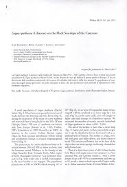 (PDF) On the origin of Gagea spathacea (Liliaceae) in Flora of the ...