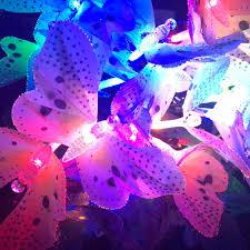 Fiber Optic Blossom Led String Lights Butterfly Solar String Lights Fiber Optic 12 Led Multi Color