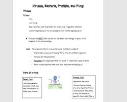 Bacteria And Protist Venn Diagram Differentiated Notes For Viruses Bacteria Protists And Fungi Tpt