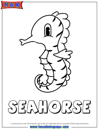 Small Picture Baby Seahorse Coloring Page H M Coloring Pages