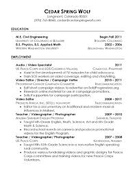 Resume Reference Examples template References For Resume Template Reference Sample 60