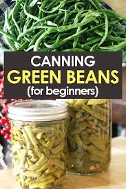 Canning Green Beans In Pressure Cookers