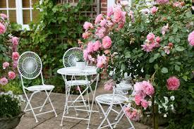 cottage garden blooming rose shrubs metal seating romantic