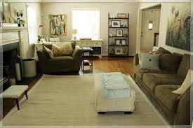Ikea Living Room Rugs Rugs In Living Room Home Design Gallery