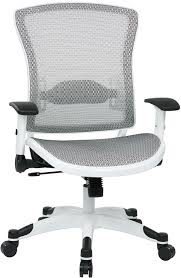 Ergonomic Mesh Office Chairs with Free Shipping ...