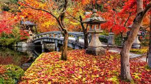 Bridge in Japan in Autumn 4k Ultra HD ...