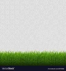 grass transparent background. Grass Transparent Background R