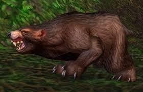 Медведь Ясеневого леса - NPC - World of Warcraft