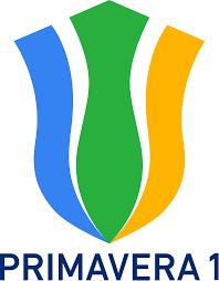 Campionato Primavera 1 – Wikipedia