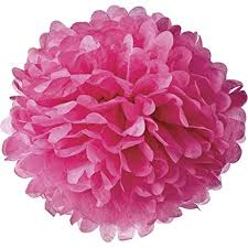 Diy Flower Balls Tissue Paper Lightingsky 10pcs Diy Decorative Tissue Paper Pom Poms Flowers Ball Perfect For Party Wedding Home Outdoor Decoration 10 Inch Diameter Rose