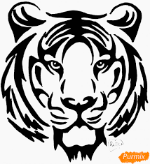 Jak Nakreslit Tygr Ve Stylu Tetování Tužkou Ve Fázích Domů