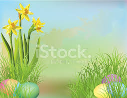 Easter Egg Hunt Background With Daffodils Stock Vector