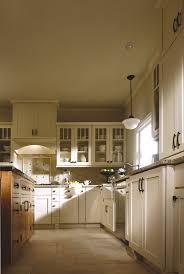 painted shaker cabinet doors. Mullion Glass Cabinet Doors Shine. RockfordPainted Linen Painted Shaker