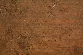 wood texture floor old wall soil dirty material wood floor background hardwood dusty wooden board flooring