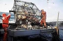 The Deadliest Catch (a Titles & Air Dates Guide)