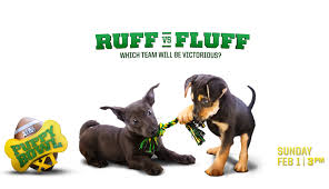puppy bowl 2015 falcor. Exellent Bowl IntroSlide With Puppy Bowl 2015 Falcor L