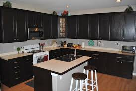 stained kitchen cabinets gel stain kitchen cabinets dark affordable modern home decor