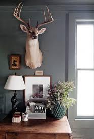 taxidermy decor deer head decor