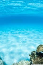 Underwater Wallpaper 4k Iphone