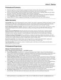 Resume Summary Template Custom Professional Summary Example For Resume Ilsoleelaluna