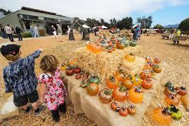 glass pumpkin patch of carmel 2016