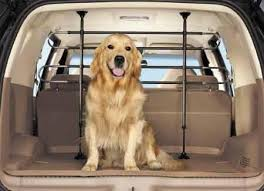 Finding The Best Car Pet Gate For Your Vehicle In 2017