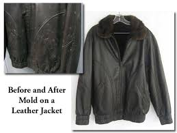 moldy leather jacket before and after