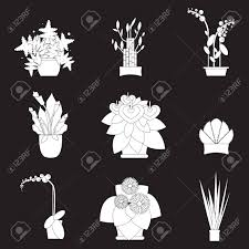 Indoor home office plants royalty Set Vector Illustration Of Houseplants Indoor And Office Plants In Pot Home Plants For Garden Or 123rfcom Illustration Of Houseplants Indoor And Office Plants In Pot