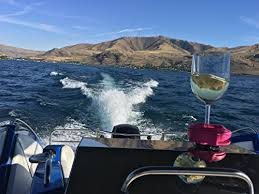 boaters wine glass holder by bella d vine for stemless stemmed glasses comes with a 3 g suction base for boats sailboats bath and hot tubs wine